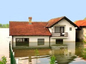 Flood Insurance Agent - Olympia & Centralia, WA