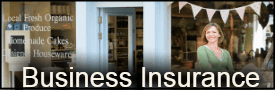 Small Business Insurance Agent Washington