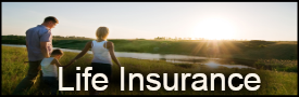 Life Insurance Agent Washington