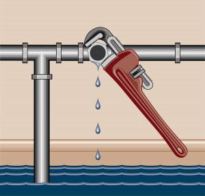 How to prevent water leaks in your Olympia, WA home