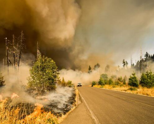 A wildfire burning on the side of the road